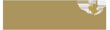 Viola Grace  Logo